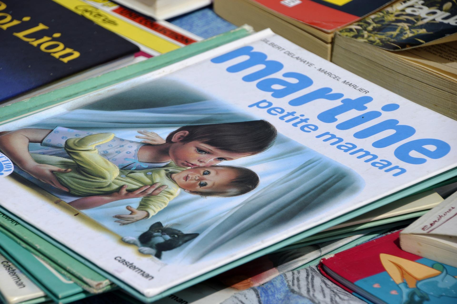 Grand troc et vente à mini prix de livres français